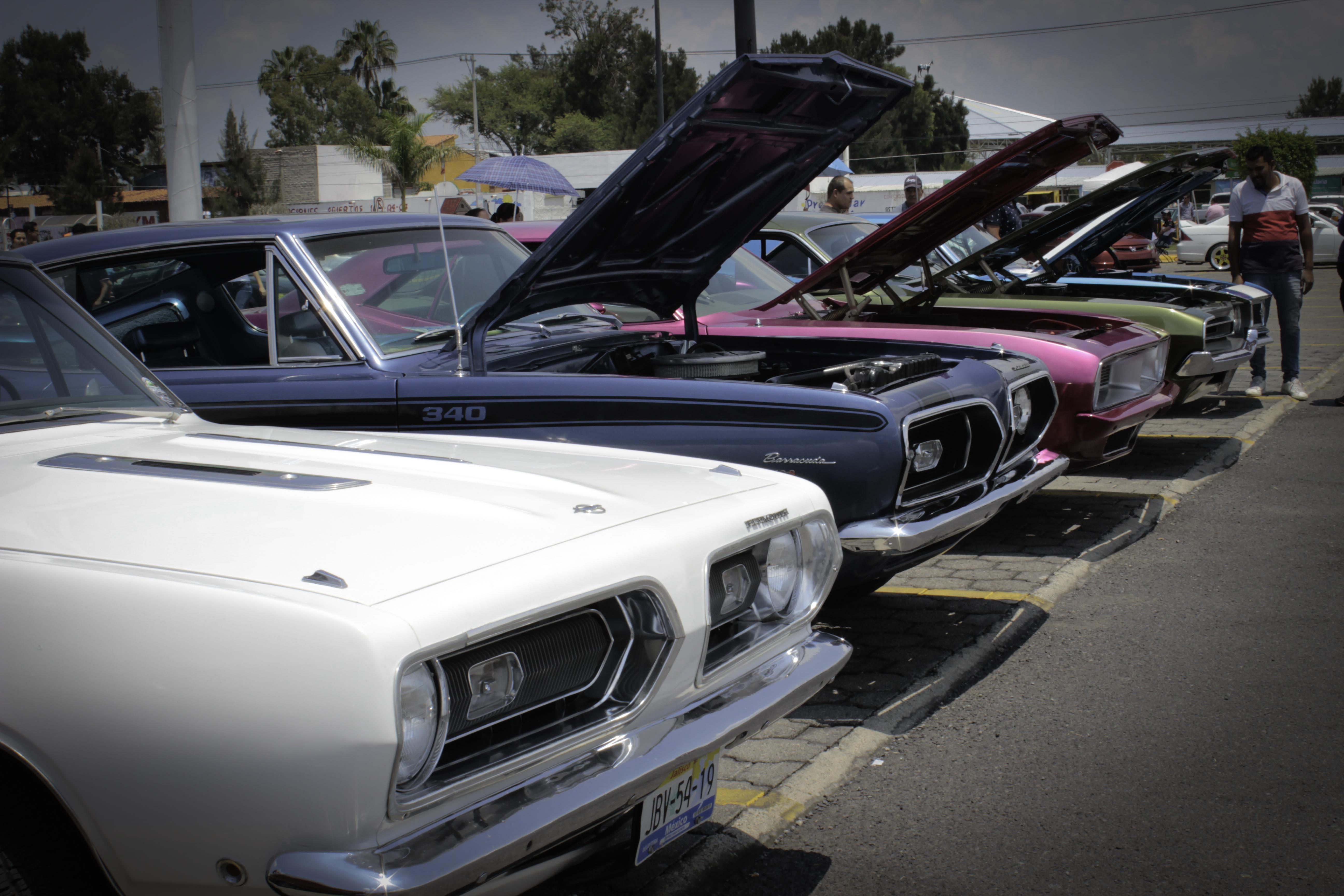 Car Fest 2015