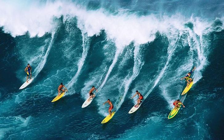 competencias surf